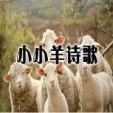 小小羊诗歌
